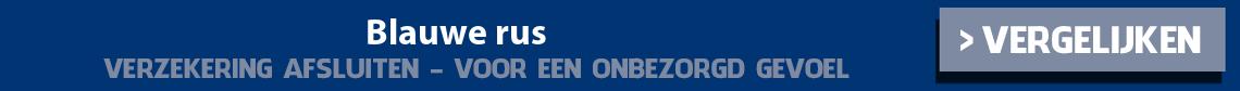 dierenverzekering-blauwe-rus